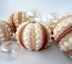 Beach Decor Seashells Nautical Rose Colored by beachgrasscottage