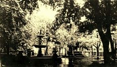 Central park 1911 downtown Mansfield Ohio