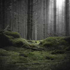 PHOTOGRAPHY BY JÜRGEN HECKEL