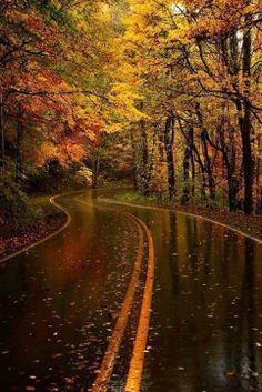 Lluvia de otoño. Carolina del Norte.