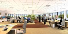 Open office vs private cubicle - Pivot Space Design Solutions | Pivot Space Design Solutions