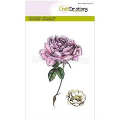 CraftEmotions Clear Stamp A6 - Stempel Botanical Rose, AFS-Trendshop