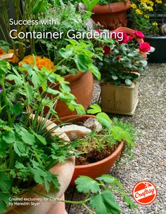 Learn How to Container Garden With Our FREE Gardening PDF eGuide!