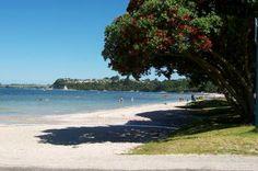 MATAKANA AREA BEACH - Auckland, Snells Beach near Matakana.