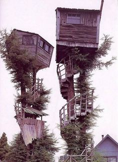 tree houses. - Click image to find more hot Pinterest pins