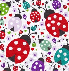 【Colorful Ladybirds】