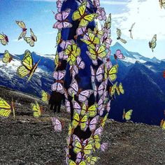 Cosmic Comic Selfie. Stopp making Sense. 2017  #facedj #prisma #comic #sims #zeichnung #austria #markuswintersberger #illusion #sense #photolab #glitché #ghostinashell #handyart #experimentellemedien #experiment #markuswintersberger #cosmic #mosh #grossglockner #hohetauernnationalpark #mosh #wien #vienna