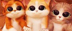 Resultado de imagen para gatitos caricatura
