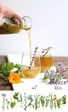 Wildkräuter-Limo