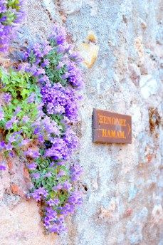 Discover Monemvasia – the medieval city of Greece – ellwed Medieval Fortress, Greece, Artists, City, Inspiration, Greece Country, Biblical Inspiration, Cities, Inspirational