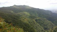 Mauricio nature