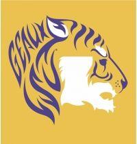 Louisiana LSU Tiger... grooms cake? (work)