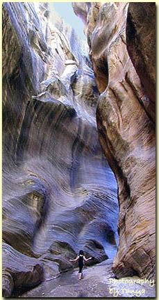 Willis Creek is a beautiful slot canyon hike in the Grand Staircase Escalante that the entire family can enjoy