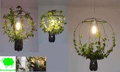Living Lamp