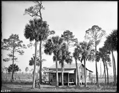 http://lbry-web-002.amnh.org/san/dimock/49201.jpg settler's house, sanford florida 1910 from the american museum of natural history digital collections, photographer julian dimock