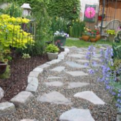 Ideas for the backyard