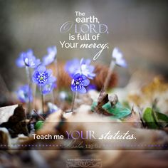 The earth, O LORD, is full of Your mercy; teach me Your statutes. Psa 119:64. <3