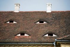 Eyes Of The Roof - Sibiu,Transilvania, Romania Sibiu Romania, Bucharest Romania, Places To See, Places Ive Been, Wonderful Places, Beautiful Places, Romania People, Wattle And Daub, Famous Castles