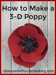 [Video]How to Make a 3D Poppy with Flower Market Cricut Cartridge