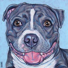 """Custom Pet Portrait Painting 8"""" x 8"""" in Acrylic Paint on Ready to Hang Canvas of One Dog, Horse, Other Pets. Blue Pit Bull Sample from Pet Portraits by Bethany on Etsy."""