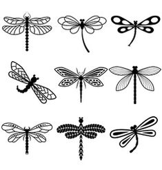 Dragonflies black silhouettes on white background vector