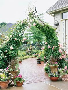 Typical Twist   Arbor, roses, patio, outdoor living, furniture, landscape, flowers, walkway, stone/brick, hedge, garden, path, brick/stone  Outdoor Spaces