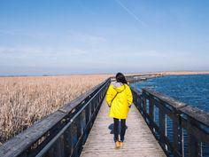 Escapade en Ontario #2 : Marcher sur l'extrémité du Canada au parc national de la Pointe Pelée Escapade, Canada, Parc National, Ontario, Raincoat, Landscape, Travel, Rain Jacket