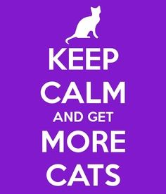 Keep calm and get more cats- yeah I wish!