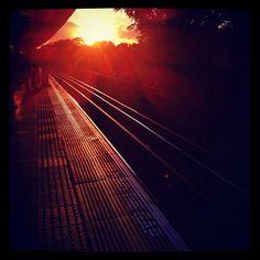 London autumn sunset.