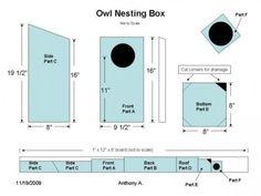 Screech Owl House Plans: How To Build A Screech Owl Box