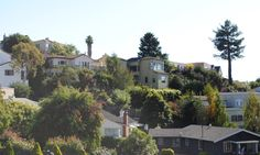 Homes in Upper Rockridge in Oakland, CA