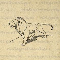 Printable Image Lion Digital Illustration by VintageRetroAntique