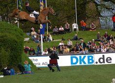 2008 Hamburg Spring Derby...  Horse and rider were fine  :)
