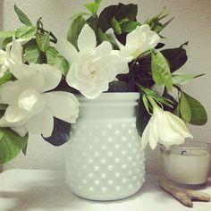 """Gardenias #flowerstagram #flowersofinstagram #flowers"" Photo taken by @rhiannonflowers on Instagram, pinned via the InstaPin iOS App! http://www.instapinapp.com (07/16/2013)"