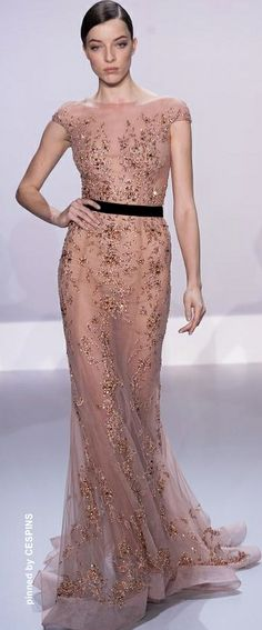 CESPINS ❤ Ralph & Russo Haute Couture Spring 2014