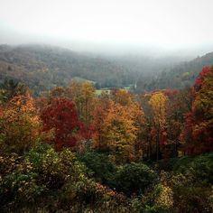 A fall mist