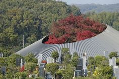 Breathtaking Japanese cemetery hall gracefully blends architecture with nature