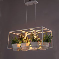Buy A Greenhouse Pot Restaurant Dining Room Lron Chandelier Double Personality with Lowest Price and Top Service!