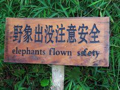 Chinglish signs Wild Elephant Valley, Yunnan, China