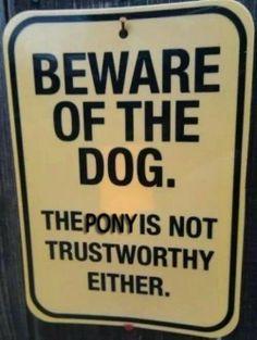The pony is not trustworthy...