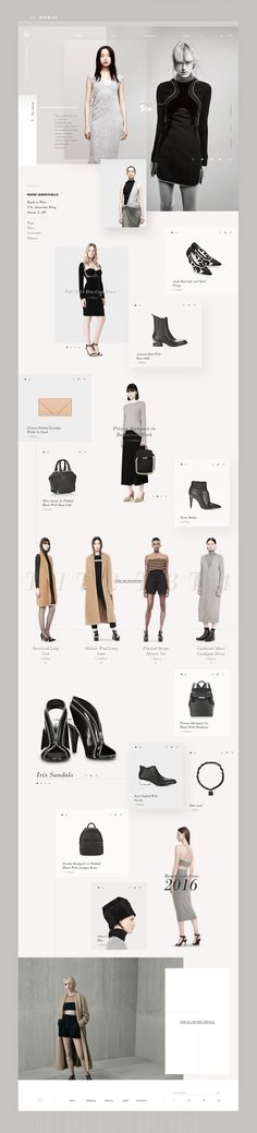Alexander Wang - Fashion Website