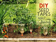 Smart Tip for Planting Tiny Seeds Have you ever planted tiny garden seeds in a neat square or row only to find them sprouting up in odd locations or disappearing all together? I had this problem with the...