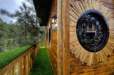 Hobbit Treehouse in South Dakota
