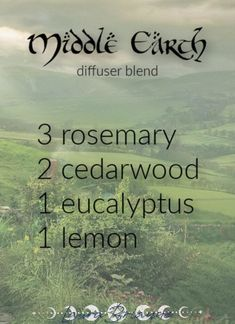 Essential Oil Diffuser Blends, Essential Oil Uses, Doterra Essential Oils, Young Living Oils, Young Living Essential Oils, O Hobbit, Aromatherapy Oils, Belleza Natural, Perfume
