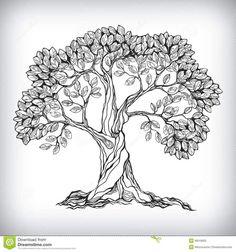 Illustration about Hand drawn tree symbol isolated vector illustration. Illustration of hand, vintage, design - 36019953 Oak Tree Drawings, Tree Drawings Pencil, Tree Sketches, Art Drawings, Drawing Trees, Drawing Art, Drawing Sketches, Tree Icon, Arte Country