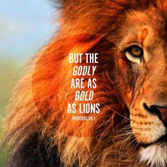 Proverbs But the Godly are as bold as lions.(not my strength, but God's strength rises up in me as a lion. Jesus is the Lion of Judah) Bible Scriptures, Bible Quotes, Lion Quotes, Faith Bible, Bible Art, Jesus Reyes, Jesus Christus, Stairway To Heaven, Christian Quotes