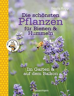 Die schönsten Pflanzen für Bienen und Hummeln: im Garten, auf Balkon