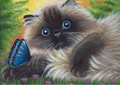 Himalayan Persian Cat in Acrylics