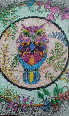 Floresta Encantada/ Coruja /Johanna Basford