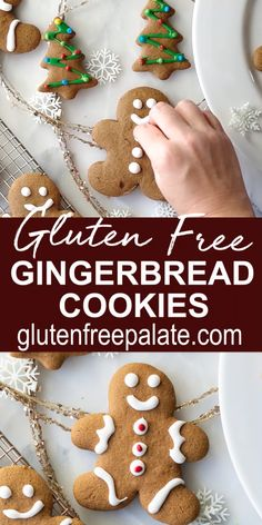 Easy, cut-out Gluten Free Gingerbread Cookies! This gluten free gingerbread cookie recipe delivers the perfect texture and gingerbread flavors. Enjoy these gluten free ginger cookies plain, dusted with powdered sugar, or decorate them with icing. Gluten Free Recipes Videos, Gluten Free Christmas Recipes, Gluten Free Christmas Cookies, Gluten Free Cookie Recipes, Gluten Free Baking, Recipe Videos, Christmas Ginger Cookies, Gluten Free Gingerbread Cookies, Cookies Sans Gluten